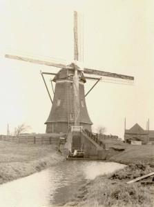 molen_van_rijn_001